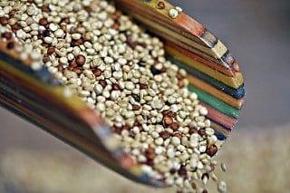 Recipe (Vitamin D, Magnesium & Omega-3s): Salmon Quinoa Buddha Bowl