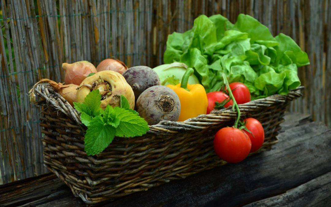 Raw vs. Cooked – Which Contains More Vitamins and Minerals?