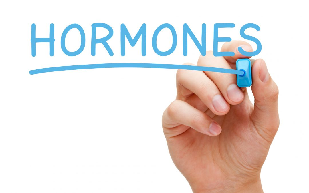 7 Hormone Balancing Lifestyle & Diet Tips